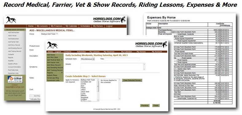 Keep accurate horse and stable records online.Vet, Farrier, Show, Medical Items, Riding Lessons, PDF Reports and more